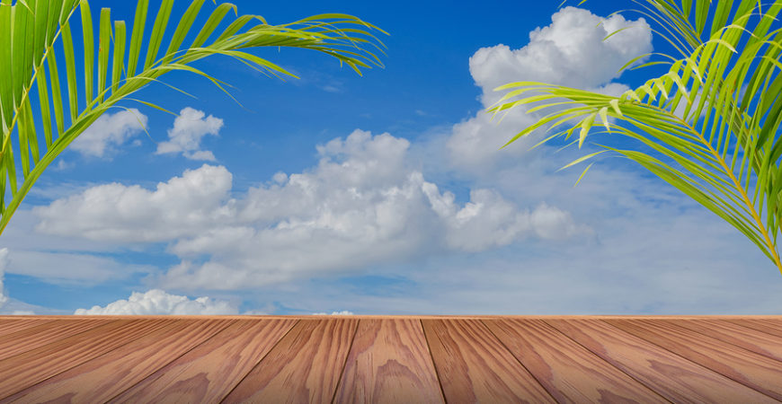 brown wooden floor and palm leaf with blue sky background