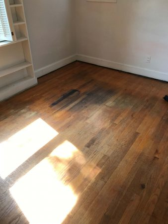 Oak Restoration 10