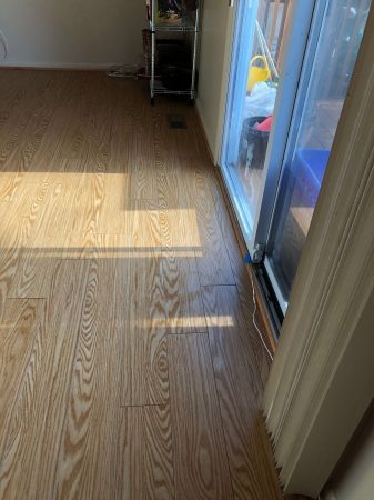 Red Oak LVP Vinyl Glue Down 2