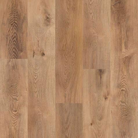 Canton Timber 1